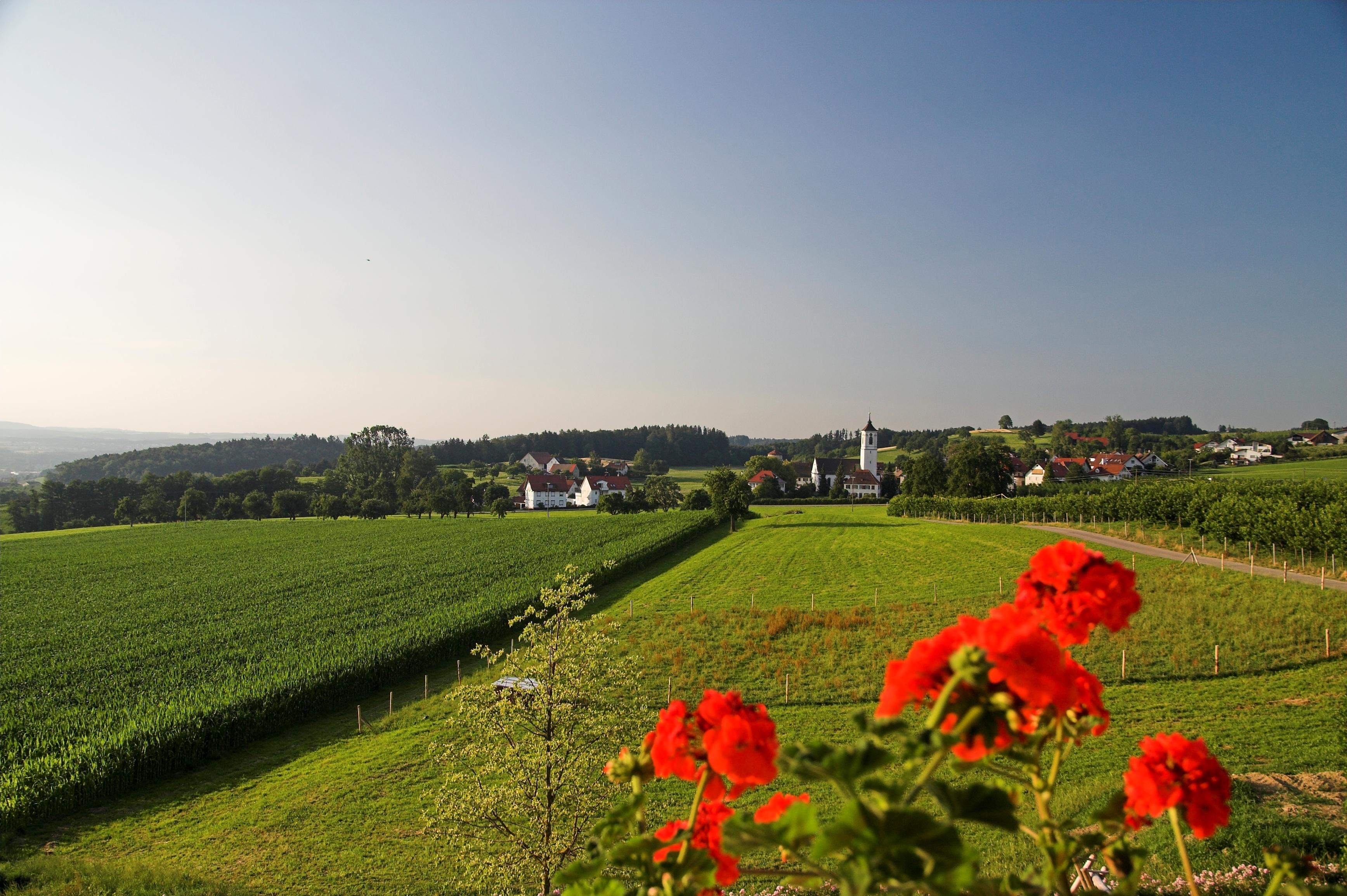 Unser kleines Dorf Gornhofen
